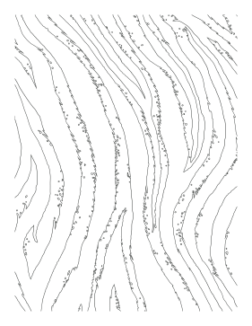 Branches coloring page