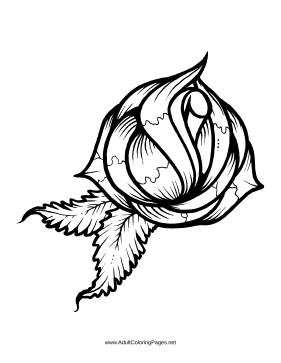 Bud coloring page